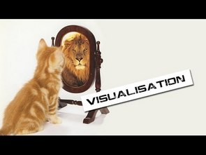 visualisation - Cat sees a lion in a mirror